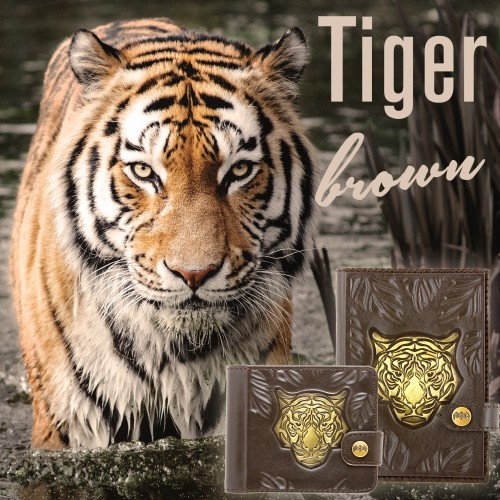"Новая коллекция ""Tiger Brown"" от КАЖАН"